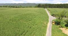 4K Aerial of a corn field on a farm, flying forwards, tilt down Stock Footage