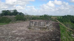 Altun Ha Sacrificial Altar Stock Footage