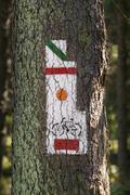 Poland, Gorce Mountains, trail blazing marks Stock Photos