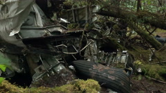 PAN-1957 plane wreckage in Alaskan rain forest Stock Footage
