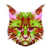 Vector low poly abstract portrait of a motley cat. Symmetrical portraits of Stock Illustration