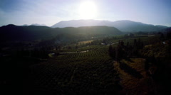 Aerial View: Hazy Valley With Smoke Over Fruit Orchard/Rural Stock Footage