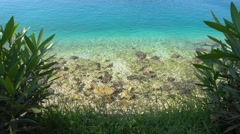 Colorful Mediterranean seashore and flora Stock Footage