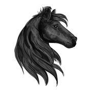 Black purebred horse stallion symbol Stock Illustration