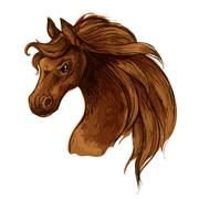 Horse mustang head sketch portrait Stock Illustration
