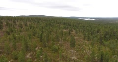 Slow low level flight over a remote northern coniferous forest Stock Footage