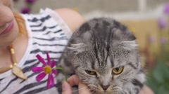 Woman with scottish-fold cat Stock Footage