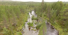 Slow low level flight over a small river in a northern coniferous forest Stock Footage