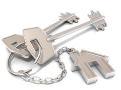 Two house door keys and house key-chain Stock Illustration