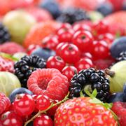 Berry fruits berries fruit collection strawberries, blueberries raspberries r Stock Photos