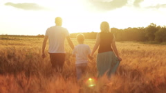 Family in wheat field at sunset Stock Footage