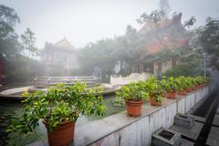 Plants and historic buildings in fog, at Ngong Ping, Lantau Island, Hong Kong Stock Photos