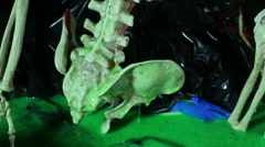 Gross skeleton body slime Stock Footage