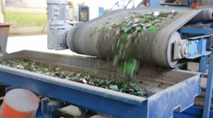 Glass waste in recycling facility. Glass particles on line Stock Footage