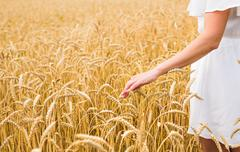 Woman walking in the wheat- concept about nature, agriculture and people Stock Photos