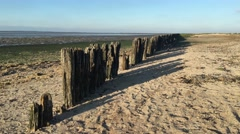Wooden poles during low tide at the waddensea Stock Footage
