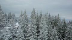 Aerial view winter ski slope mountains Carpathians Stock Footage