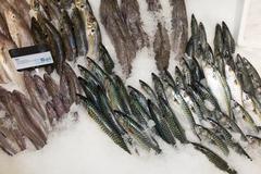 Choice of fish on a market display at a supermarket Stock Photos