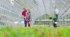 4K Plant nursery worker helping couple who are shopping for plants Stock Footage