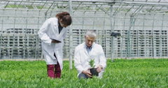 4K White coated workers in agriculture and science industry checking plants Stock Footage