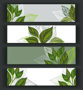 Set of tea banners Stock Illustration
