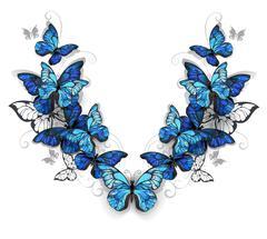 Symmetrical pattern of butterflies morpho Stock Illustration