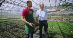 4K Business manager & staff member discussing work in large plant nursery Stock Footage