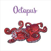 Drawing of octopus isolated on white background Stock Illustration