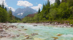 Emerald River Flowing through the Green Forest Stock Footage