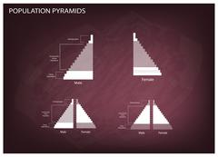 Detail of Population Pyramids Graphs Depend on Age and Sex Stock Illustration