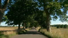 Driving on a road with trees. Sunlight and Shadows. Europe, Germany. POV Stock Footage
