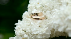 Two gold wedding rings Stock Footage