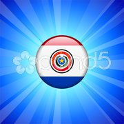 Paraguay Flag Icon on Internet Button Stock Illustration