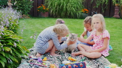 Children play with a cat in the yard. Sitting on a green meadow, stroking the Stock Footage