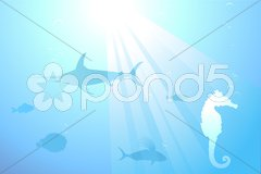 Marine life background Stock Illustration