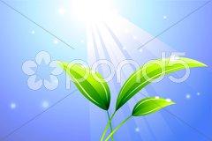 Sunbeam on a leaf background Stock Illustration