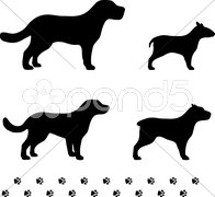 Four dog breeds with paw tracks Stock Illustration