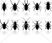 Insects silhouettes set - stock photo
