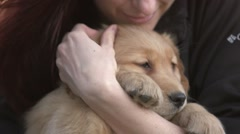 Close up girl holding Golden retriever puppy Stock Footage