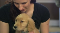 Close up of a golden retriever puppy in girls lap Stock Footage