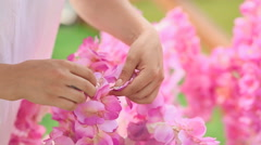 Decorator florist works with pink flowers Stock Footage