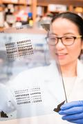 Working in the biology lab Stock Photos
