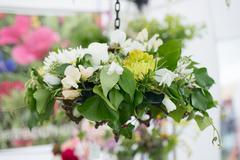 Hanging basket Stock Photos