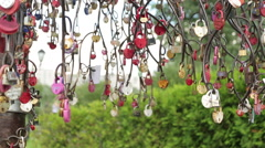 Tree with locks. Wedding traditions Stock Footage