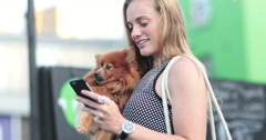 Young female with pet dog and smartphone Stock Footage