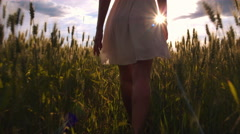 Slow-motion - Walking behind beauty girl in wheat field and stopping Stock Footage
