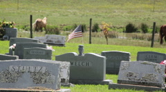 American flag at a headstone in a cemetery in the rural country Stock Footage