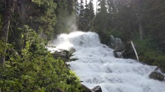 Cascading Whitewater Stream Stock Footage
