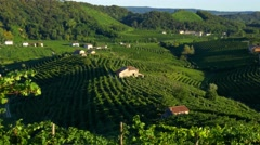 Prosecco country - Zooming view on the Cartizze hills Stock Footage