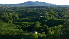 Prosecco country - Motion view at Valdobbiadene Stock Footage